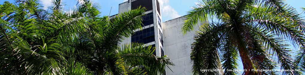 Faculty of Environmental Management